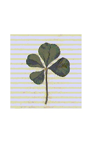 the flag of luck